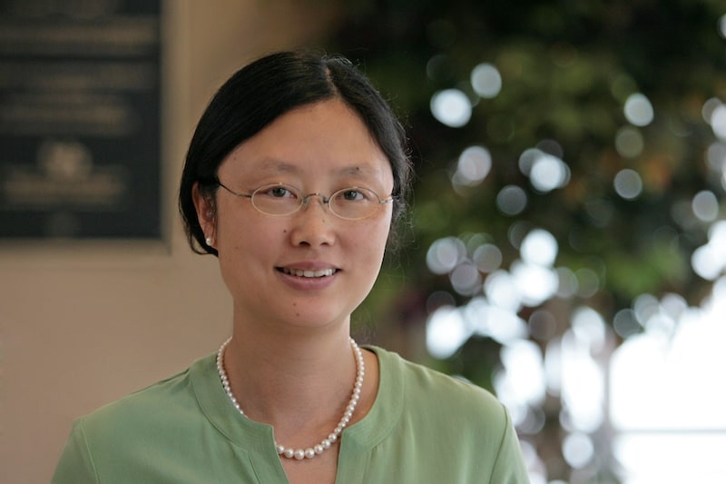 Dr. Cynthia Fan Leads Windsong's Research